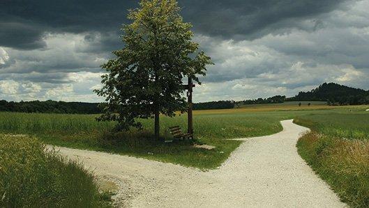 Symbolbild: Weggabelung mit zwei Bäumen und düsterem Himmel.