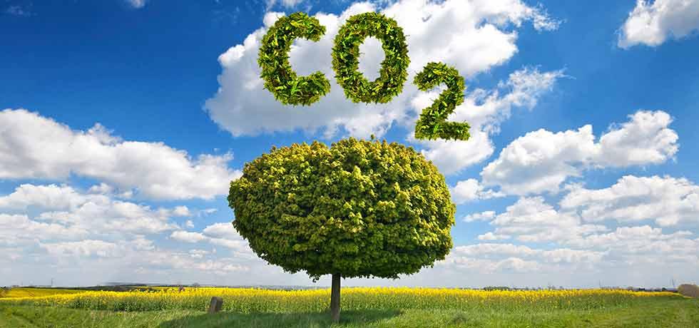 Klinikum Westfalen mindert Ausstoß von CO2 um 525 Tonnen im Jahr
